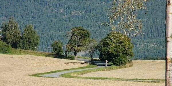2-km-hytteplanmila Hjem